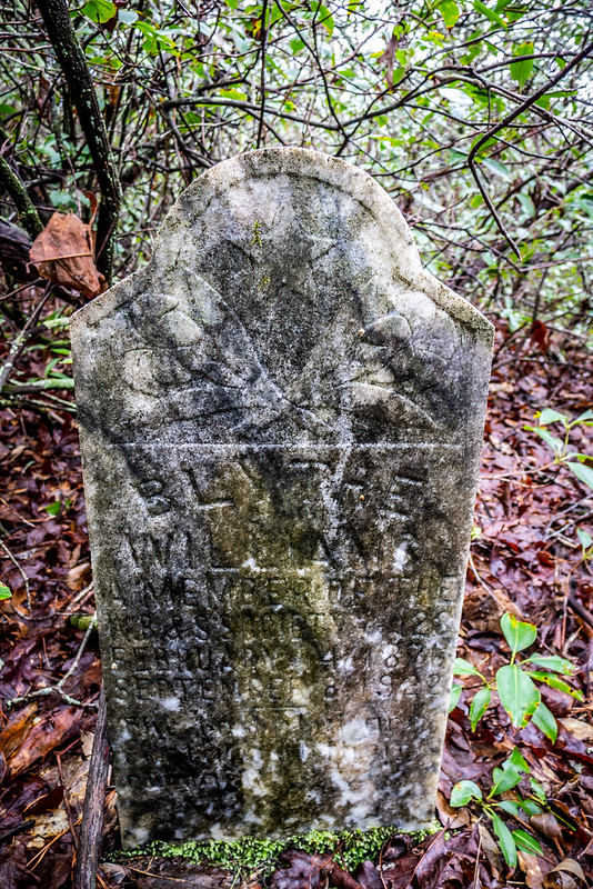 Tall Pines Preserve and South Saluda Church Cemetery-68