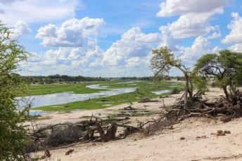 Hippopool is in dit park een uitloper van de Okavangadelta.