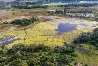 De Okavanga delta wordt gevoed door de Okavanga rivier, en al het water verdampt uiteindelijk in de Kalahari.