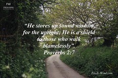 Tuesday Proverbial Wisdom: Tap Into His wisdom, discover how to walk blamelessly, and He will be your shield.
