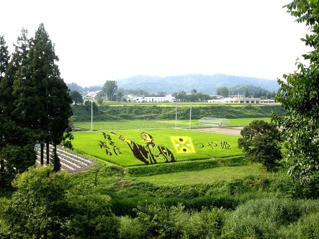 Rice Paddy Field Art in Yonezawa 2012