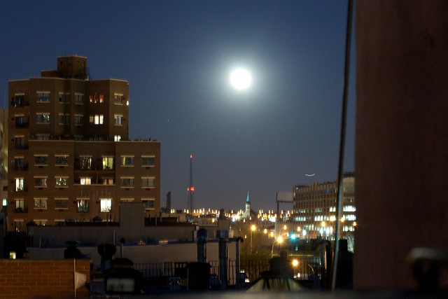 Pascual Moon