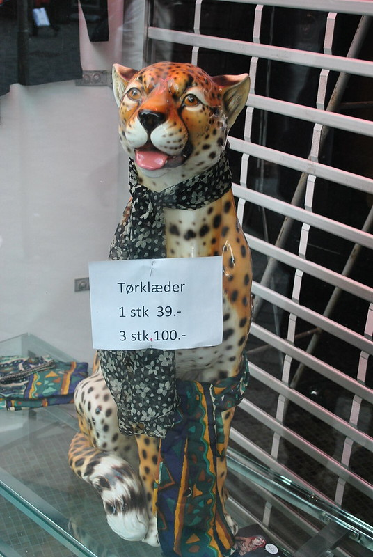 Danish Cheetah