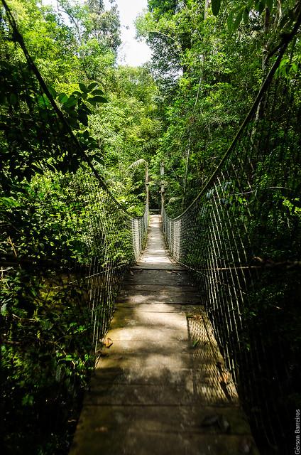 Grande ponte