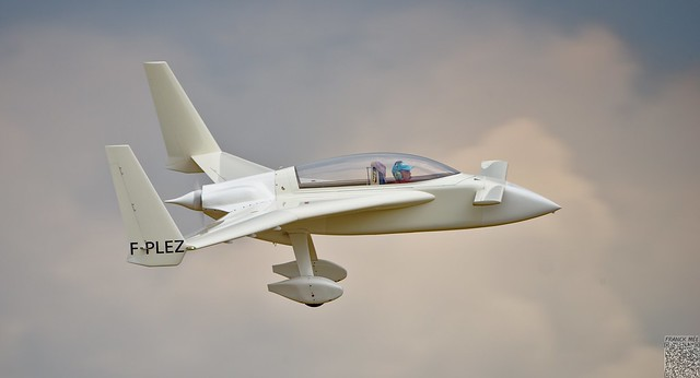 Rutan Long-EZ