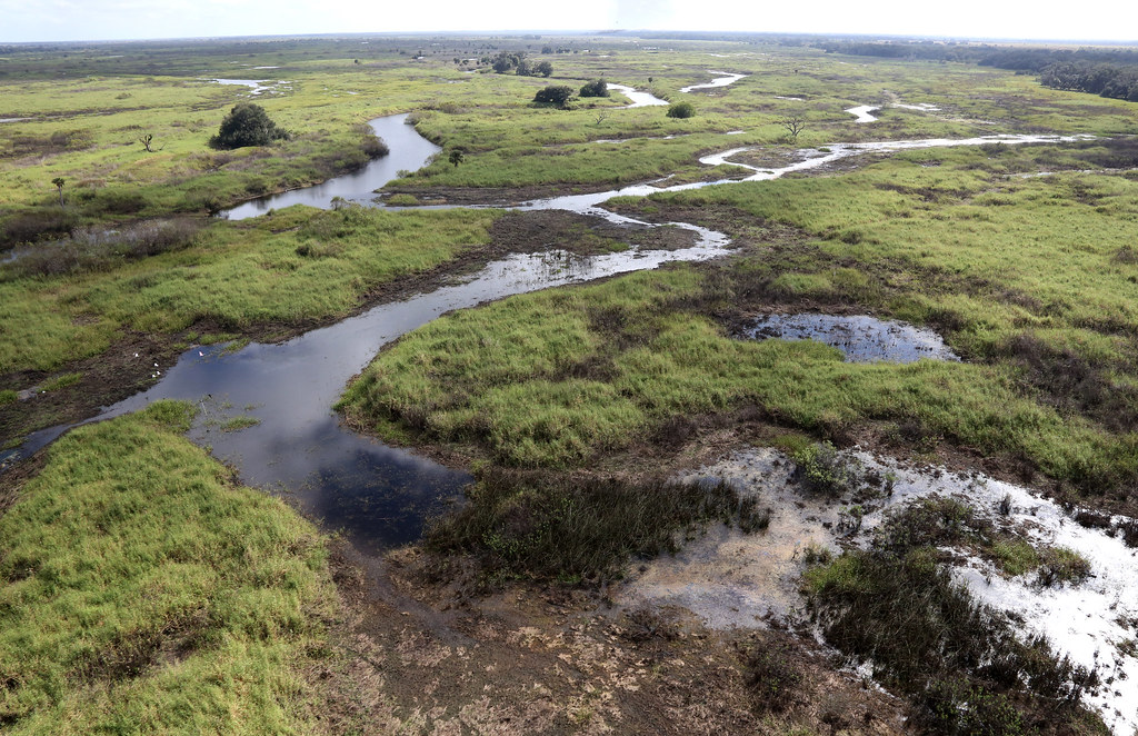 With the onset of the dry season in late October, the Phase I restoration area floodplain begins to recede.