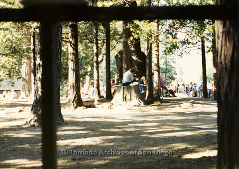 P024.239m.r.t Women sitting on a tree stump at a gathering