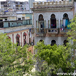 03 Viajefilos en el Prado, La Habana 14