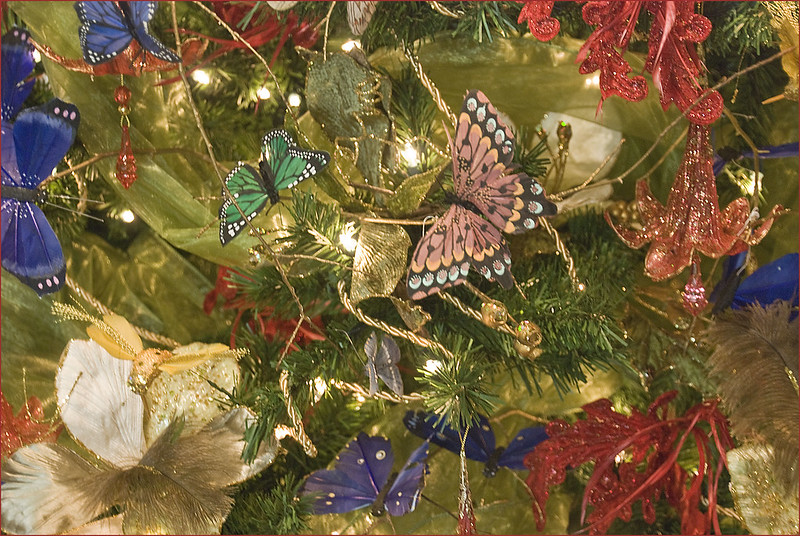 Butterfly Christmas Tree -- Winterthur (DE) December 2012