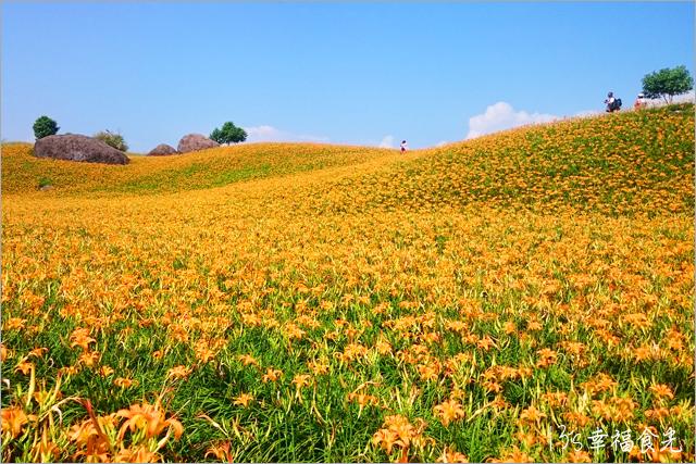 13S_HLS_CO13 | 【花蓮赤柯山金針花】2016花蓮金針花季-赤柯山金針花拍照景點-赤柯山三顆巨石-2016金… | Flickr