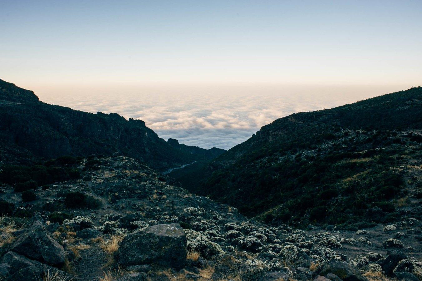 Kilimanjaro_24