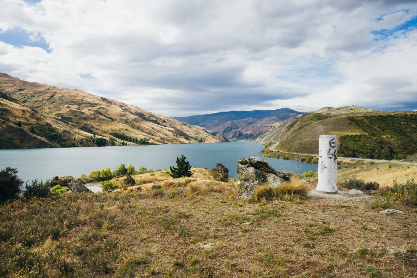 NZ_Digital_10