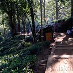 11 Viajefilos en Sri Lanka. Adams Peak 22