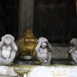 01 Viajefilos en Bangkok, Tailandia 093