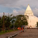 14 Viajefilos en Sri Lanka. Yala 55