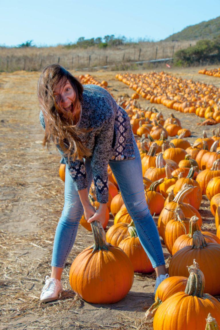 10.01. Rodoni Farms Pumpkin Patch