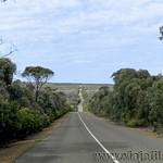 Viajefilos en Australia. Kangaroo 22