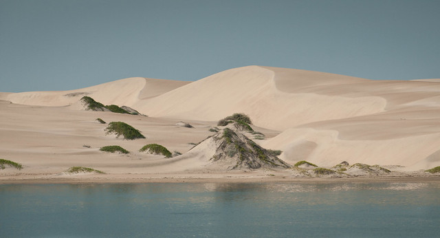 The Dunes of Isla Magdalena