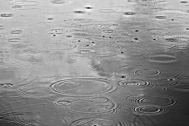 PUBLIC DOMAIN DEDICATION - Pixabay- Pexels digionbew 13. 30-07-16 Rain drops on the pond LOW RES DSC07317
