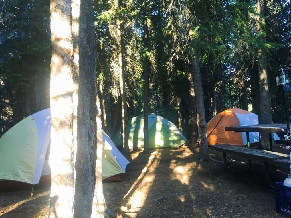 Grant Village Camp Grounds 2 days in yellowstone