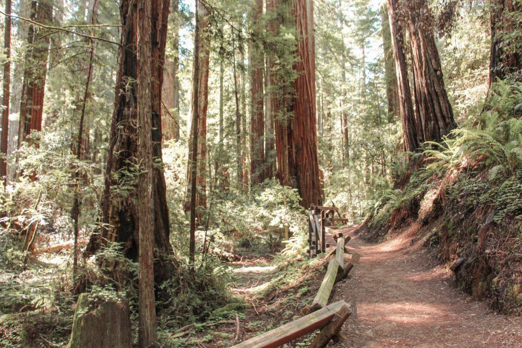 Sonoma Valley, California, United States
