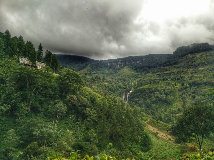 En route to Nuwara Eliya: The higher we go up the mountains, the colder and more cloudier it gets. No more tropical trees, but more trees that you'd see in Canada.