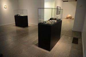 1-heidi-hove-backyard-history-i-ii-2013-exhibition-view_0