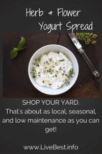 Herb and Flower Yogurt | One of the prettiest dishes. Ever! Herb and Flower Yogurt is quick, easy and a better-for-you appetizer than most. www.LiveBest.info