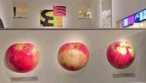 apples at Portland art museum