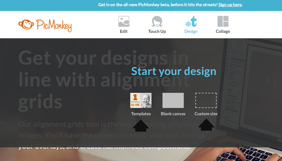 how to create a professional logo with picmonkey