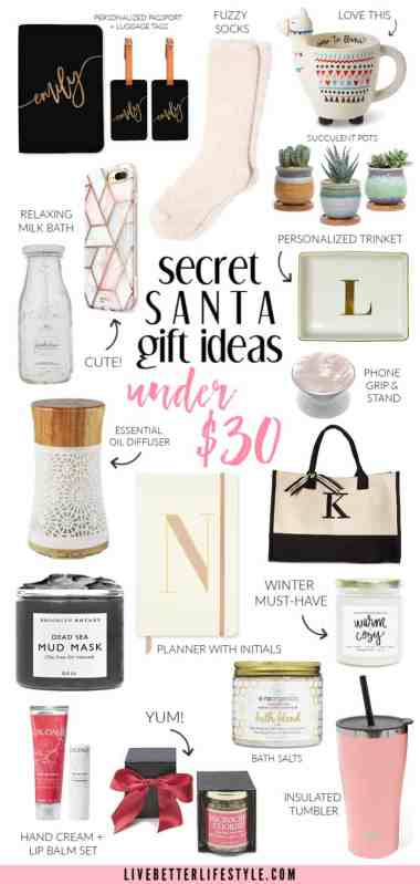 gift guide - secret santa gift ideas that are under 30 dollars