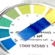 acid alkaline saliva and urine test
