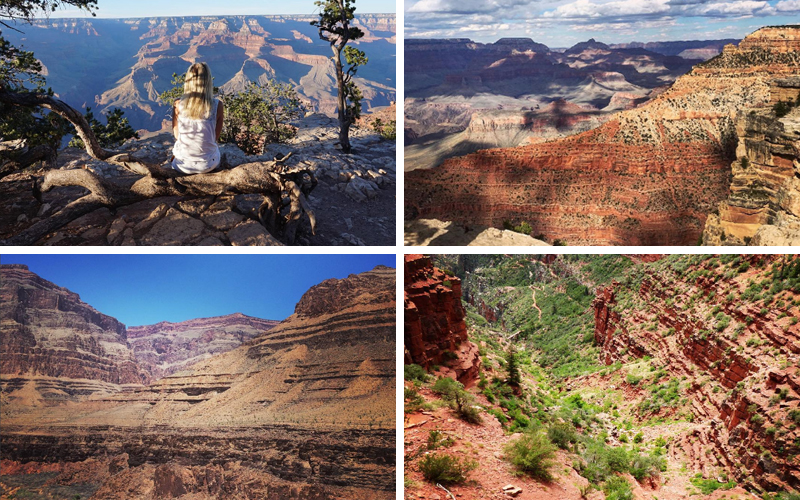 grand canyon, picture of 4 different pictures of the grand canyon