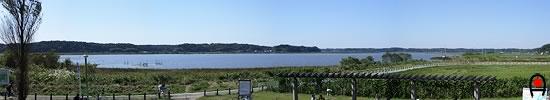 双子公園から印旛沼の写真