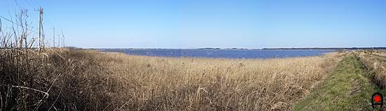 甚兵衛大橋付近から印旛沼の写真