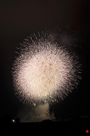 小さい光が沢山飛び散る花火の写真