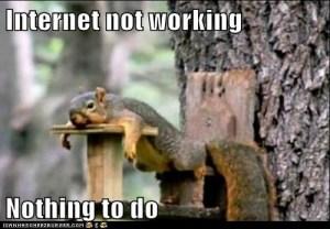 squirrel-no-internet