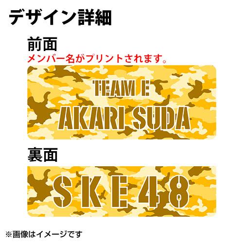 SK-147-1807-43466_p02_500