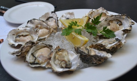 oysters-3625395_640
