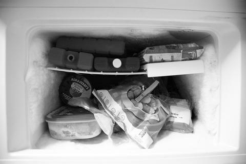 freezer-2682309_640