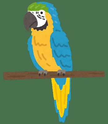 bird_inko_rurikongou