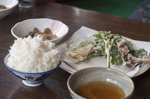 800px-山菜天ぷら_大盛り飯_(18562023572)_R