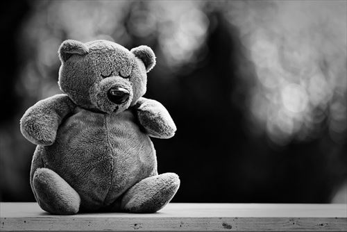 teddy-5088730_640_R