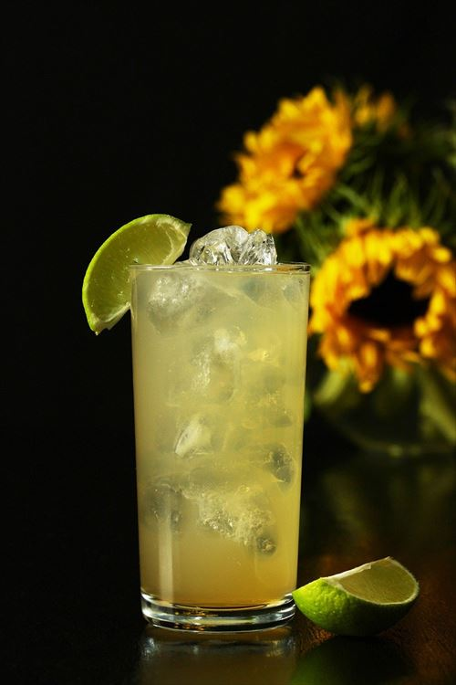 gin-and-ginger-ale-4478226_1280_R