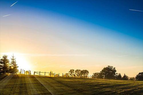 s-morning-sun-fog_R