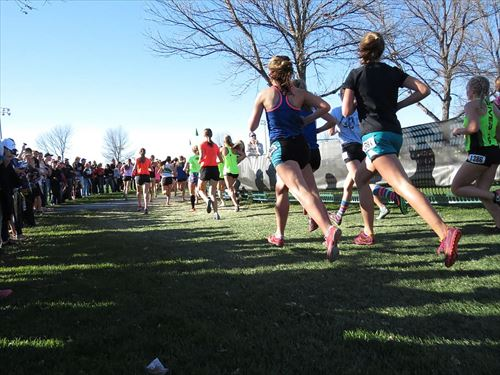 runners-cross-country-race-finish-line_R