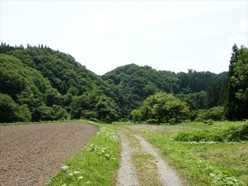 Country_Roads_(2597319774)_R