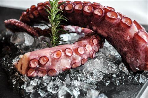 close_up_octopus_seafood-1626812_R