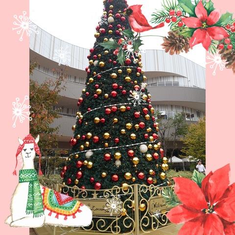 deco_2019-11-11_23-33-42