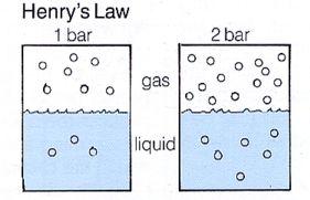 ヘンリーの法則